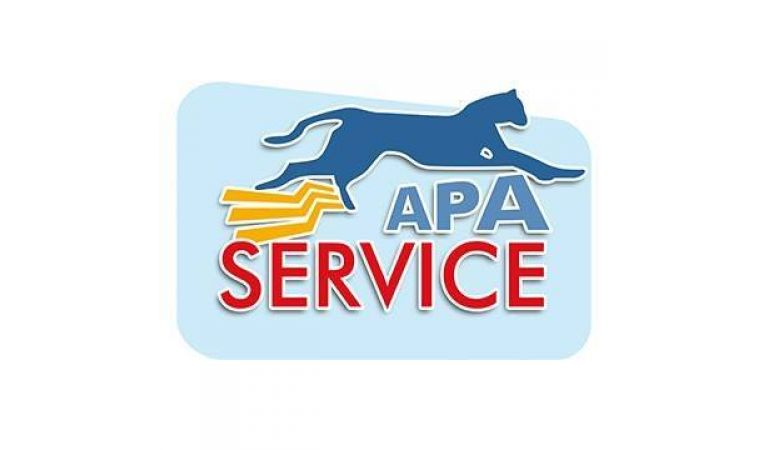 Apa Service Marketing e Web