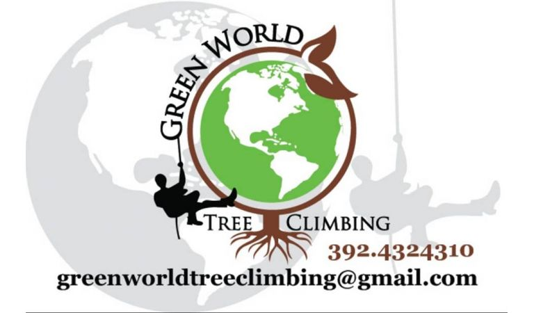 Green World Tree Climbing